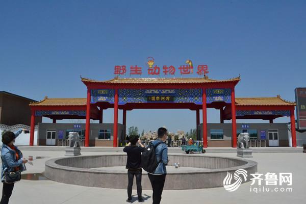 野生动物园计划5月19日开业 承办推介会开幕式 聊城滨河野生动物世界