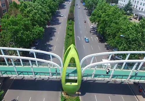 航拍拆除广告牌后的绿叶桥融入绿色泉城