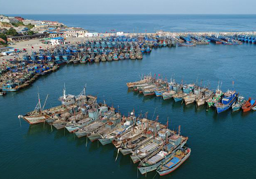飞吧山东丨开海啦!4万多艘渔船整装待发