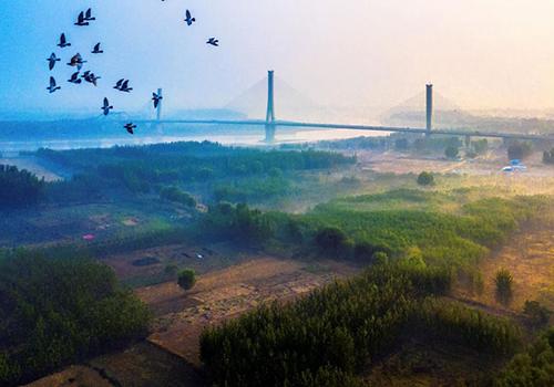 航拍黄河大桥雾蒙蒙缥缈如仙境