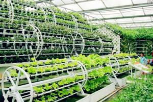 从几百元到几万元:一亩地里看现代农业新变化