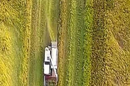 两会新观察丨发挥农业大省优势 开拓乡村振兴新途径