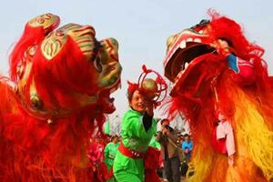 齐河狮龙迎新春
