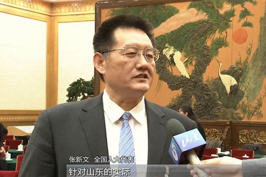 张新文:按照部署去做 山东一定会实现凤凰涅槃优势再造