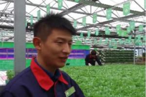 【幸福是奋斗出来的】吴少强:从辛苦农业到幸福农业
