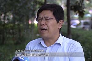 临沂市兰山区商务局局长王力:发挥商贸物流优势主动走出去