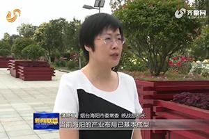 海阳统战部部长蒲晓虹:提高招商引资的针对性和精准度