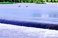 众志成城战暴雨 万众一心急抢险丨潍坊有关县市区迅速行动积极开展抢险救灾行动