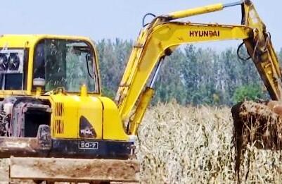 潍坊寿光上口镇养殖区被洪水淹没,防疫工作全面展开