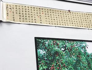 18秒丨十米书法长卷《德州赋》亮相山东文博会