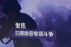 【聚焦扫黑除恶专项斗争】烟台公安:深挖细查 快侦快办涉黑涉恶案件