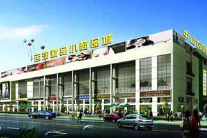 临沂新闻 丨 临沂商城坚持市场导向 西郊大棚蝶变国际商贸城