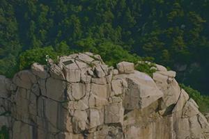 """它是天下上最陈腐的岩石!俯瞰纷歧样的""""泰山石敢当"""""""
