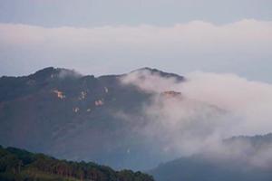 身在平地如临海境!浮沉翻涌的泰山云海原是如许作育的