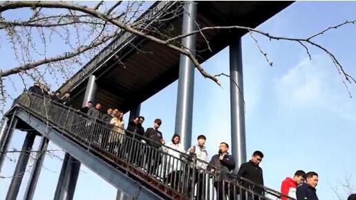 60秒 市派郯城新三合庄村第一书记:挖掘银杏资源 做好乡村旅游文章