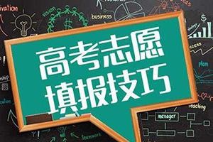 @考生 高校志愿填报政策十五连问 济南市招考院为你解答