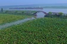 【壮丽70年 奋斗新时代】南四湖:治出绿水青山 搬来金山银山