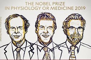 2019诺贝尔生理学或医学奖爆了冷门?氧感知机制先了解下
