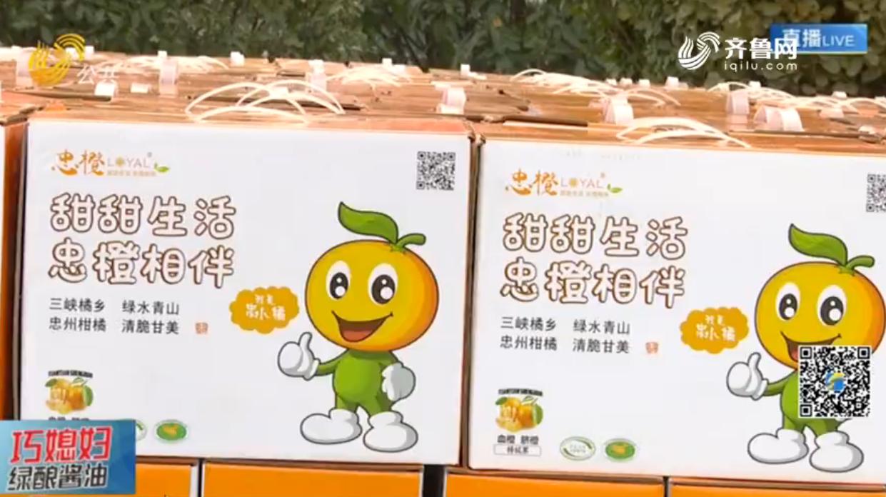 忠橙义卖首日 已销售一千多箱