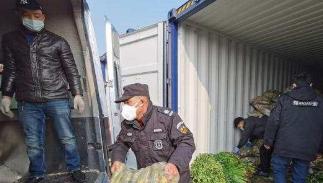 45吨山东爱心蔬菜送达武汉市抗疫一线