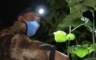 [新闻直播间]山东 抗击新型冠状病毒感染的肺炎疫情 捐赠350吨优质蔬菜支援武汉