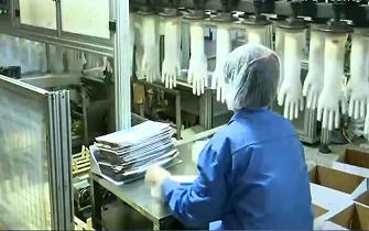 央视《朝闻天下》:潍坊一企业开足马力满负荷生产 日产一次性防护手套约2.7万箱