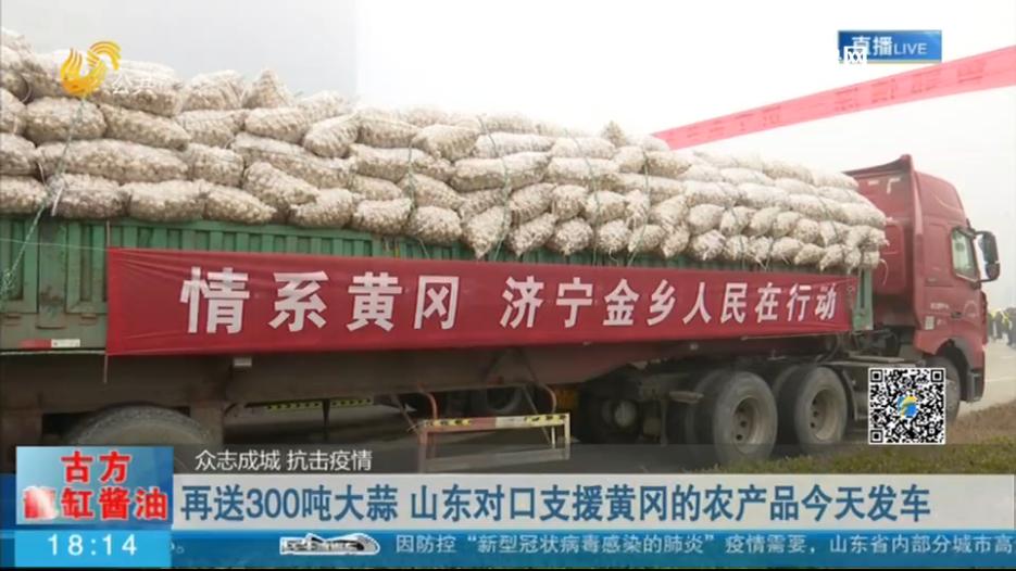 再送300吨大蒜 山东对口支援黄冈农产品发车