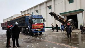 德州一企业出库储备麦7000多吨 满足加工企业原粮需求