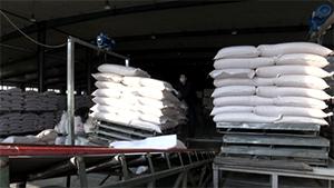 夏津发达面粉集团复工复产 产能提高25%