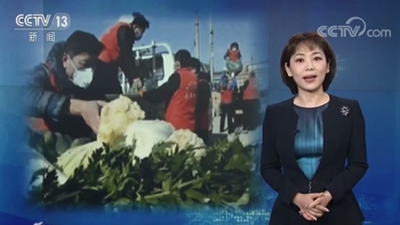 央视《焦点访谈》:截至2月5日山东累计向湖北捐赠蔬菜、水果超2300吨