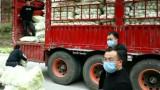 央视《新闻联播》:同舟共济 各地支援湖北疫情防控