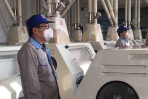 直播:日加工面粉420吨 东营这家面粉厂双线开工保供稳价