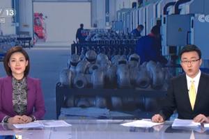 """央视朝闻天下关注团山东省委""""青鸟计划"""" 助力企业人才精准对接"""