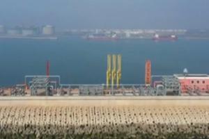 """央视《新闻联播》:""""点对点""""运输、就近招聘…多举措助山东港口重点建设项目复工"""
