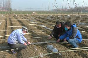 潍坊高密防疫春耕两不误 有序展开农业生产