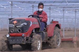 机械犁地备耕、芸豆丰收……潍坊诸城春耕备耕忙