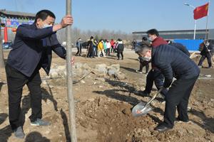潍坊青州:多元化义务植树 建设森林城市