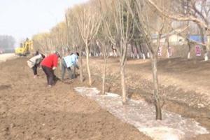 """潍坊安丘""""一村一册""""绿化 助力农村人居环境质量改善提升"""