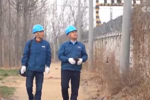 央视《朝闻天下》丨山东:加强重要输电通道巡视力度 消除安全隐患