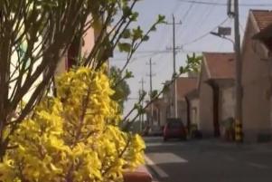 """东营利津""""滩区村""""变身美丽乡村 还被拍成了电影"""