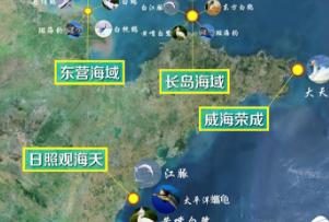 """【海洋修复看山东】""""神兽""""频现:细数山东海域""""海陆空""""珍危动物"""