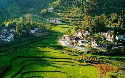 建设美丽宜居乡村,一定要更加注重因地制宜精准施策