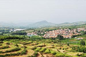 评论:美丽乡村既要有颜值,又要有气质