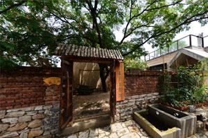 记者蹲点丨沂蒙山深处的小山村里,缘何建起了高水准的文化场馆群落