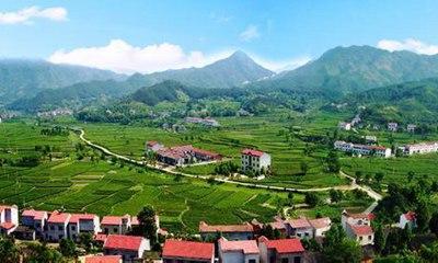 【山东新闻联播】建设美丽宜居乡村 一定要更加注重维护群众利益