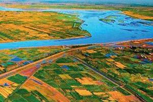 """青岛创建国家中心城市,济南明确""""黄河流域中心城市""""定位"""