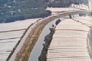 聊城市莘县:为防拆违致贫,莘县为两河滩地大棚种植户推出系列帮扶措施