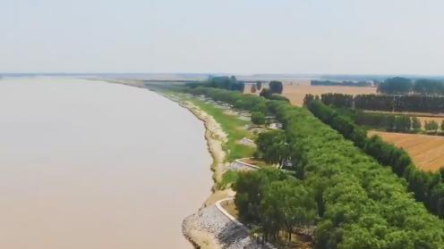 我的黄河印象Vlog 黄河险工第一坝——邹平黄河梯子坝
