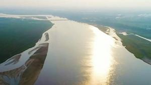 王雨带你看黄河两岸堤坝生态长廊
