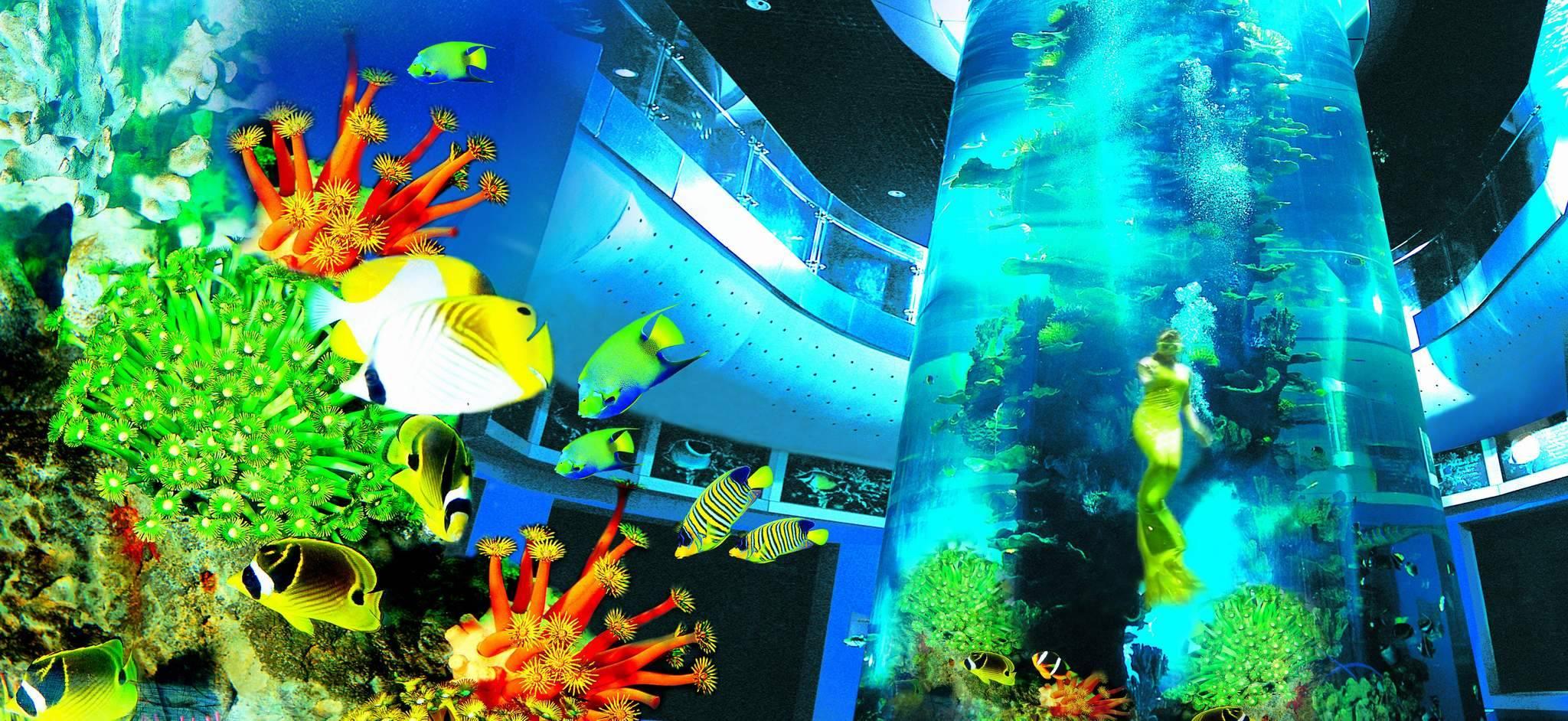 壁纸 海底 海底世界 海洋馆 水族馆 2048_942